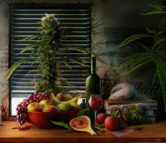 fruits_and_cannabis